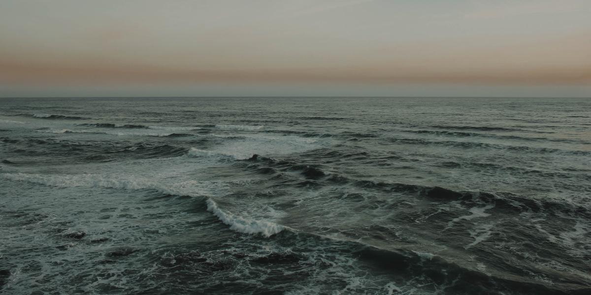 Es fácil creer que somos olas y olvidar que también somos el océano